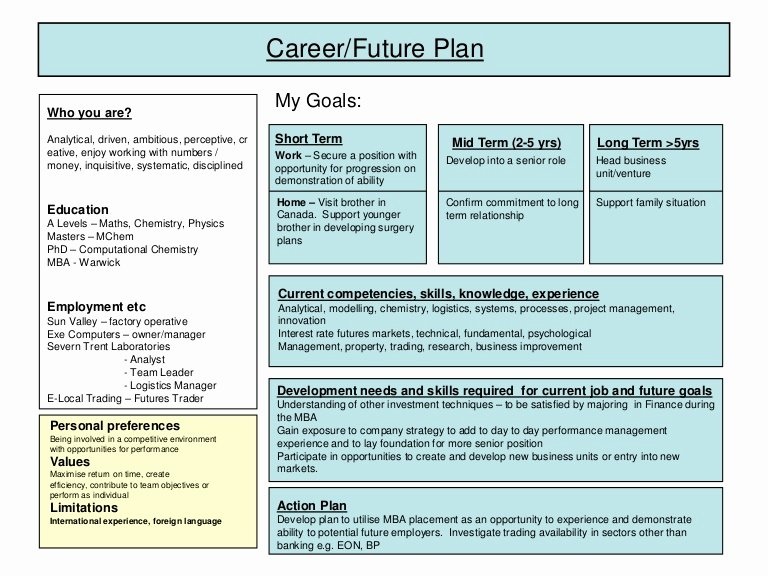 Professional Development Plan Sample Fresh Career Plan Example