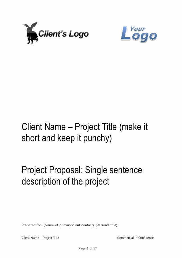 Professional Proposal Template Awesome Business Proposal Template for Consulting Program