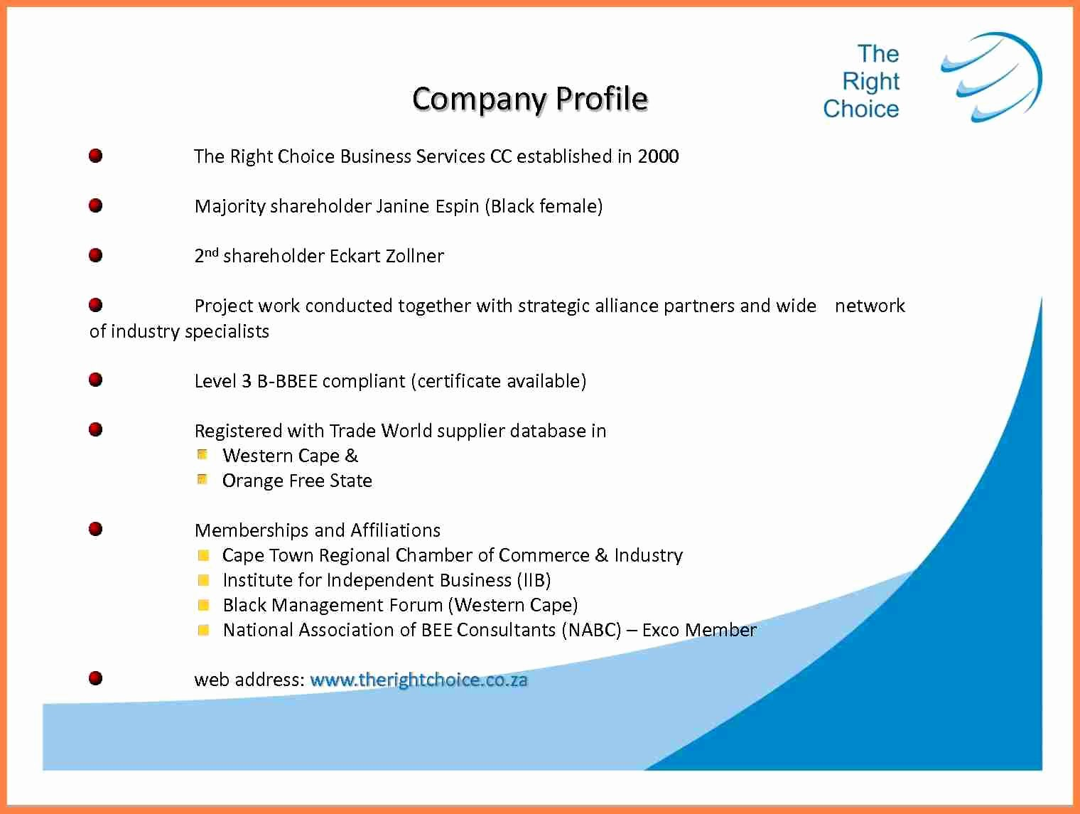 Profile Template Word Awesome 8 Information Technology Pany Profile Sample