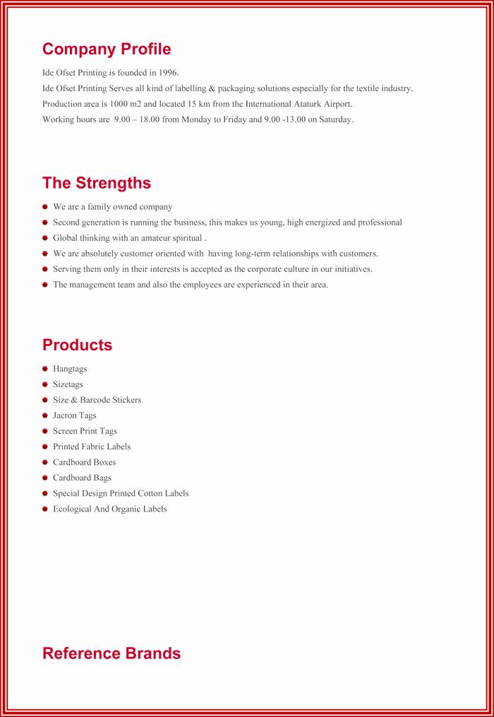 Profile Template Word Awesome Pany Profile Sample Templates Create A Professional