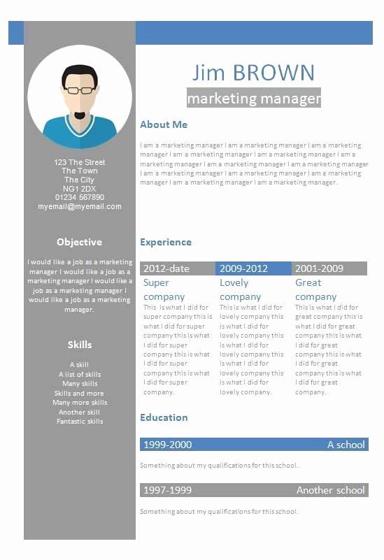 Profile Template Word Inspirational Free Profile Creative Cv Resume Template In Microsoft Word