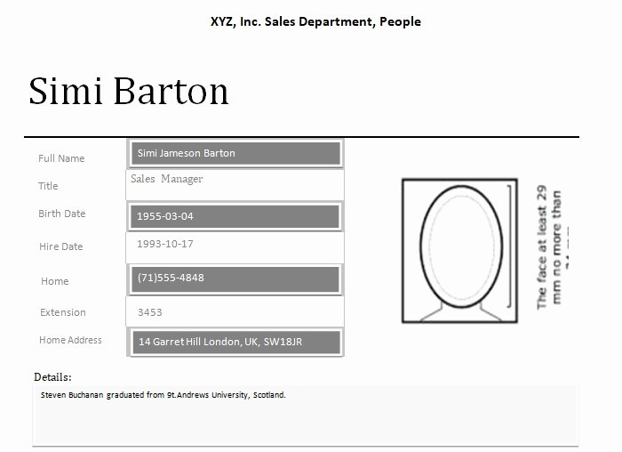 Profile Template Word Inspirational Professional Employee Profile Template Excel and Word