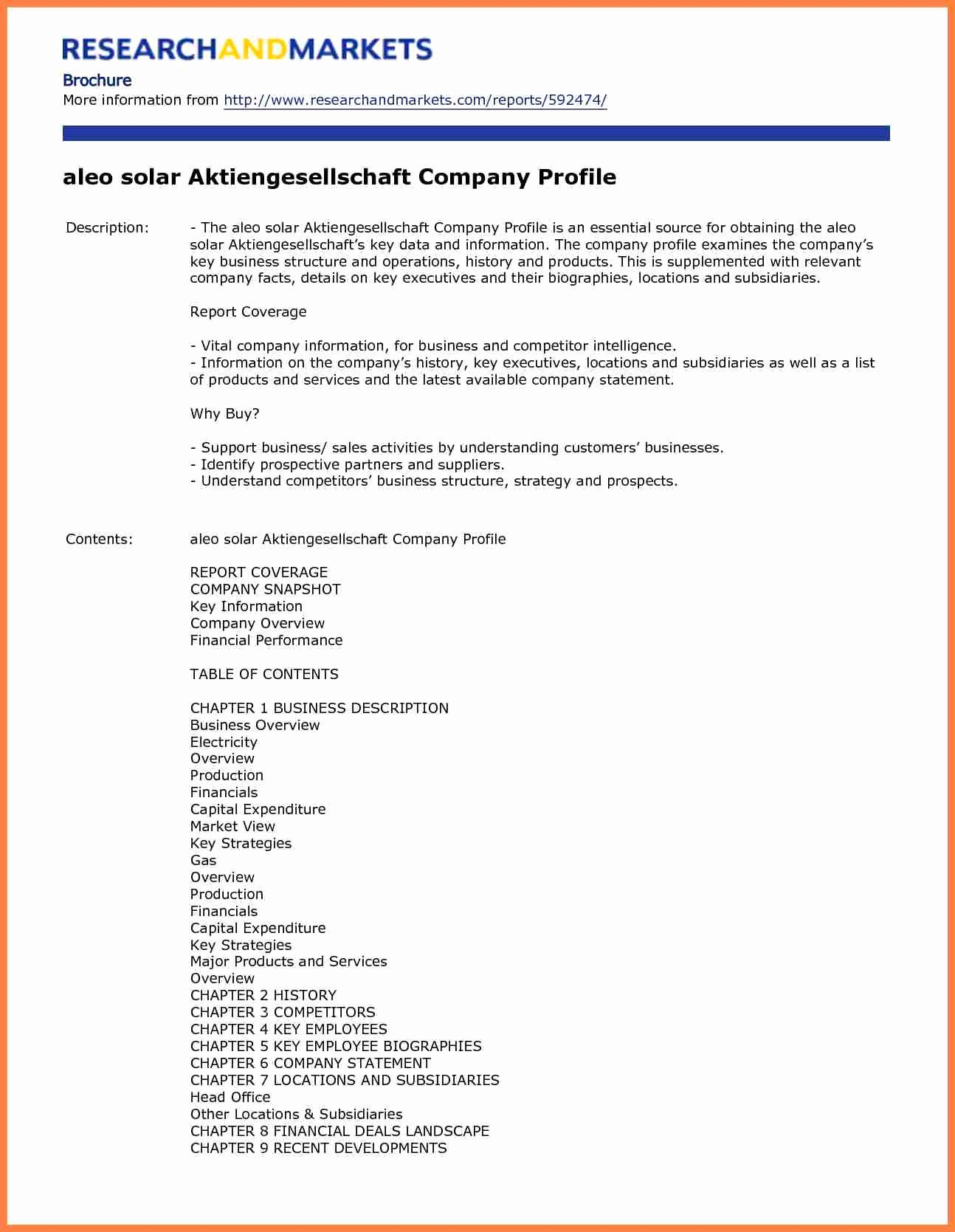 Profile Template Word Lovely 3 Sample Pany Profile format In Word