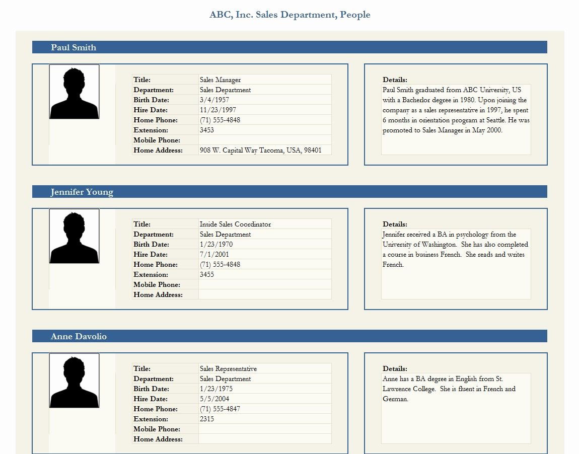 Profile Template Word Lovely Employee Profile Template