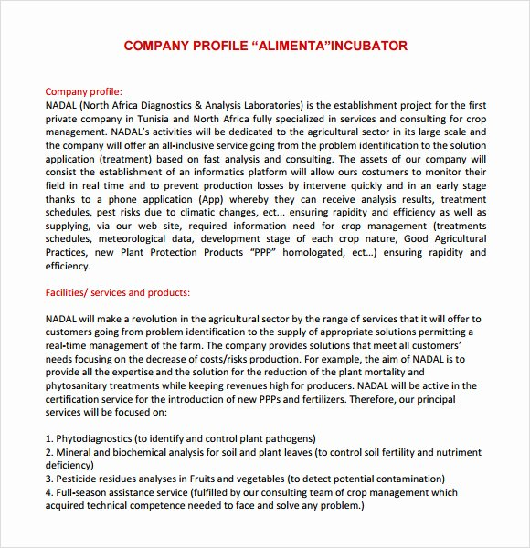 Profile Template Word New Sample Pany Profile Sample – 7 Free Documents In Pdf Word