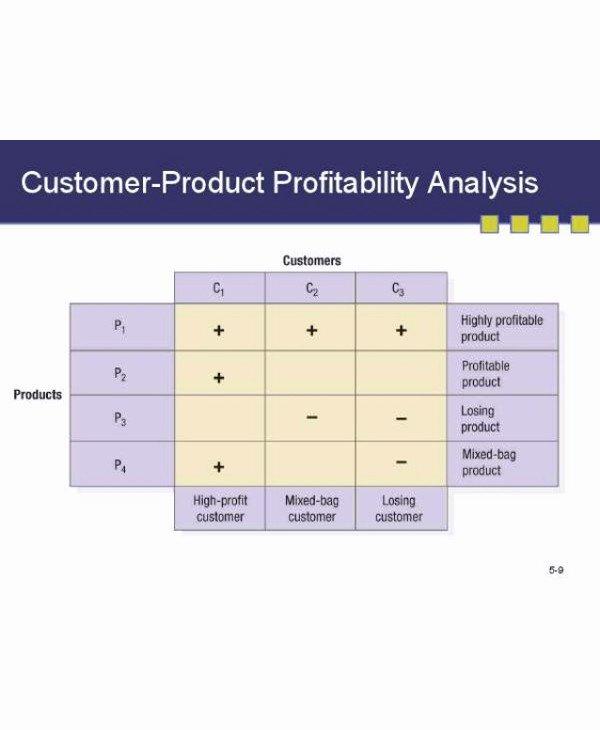 Profitability Analysis Template New 9 Customer Profitability Analysis Examples Pdf