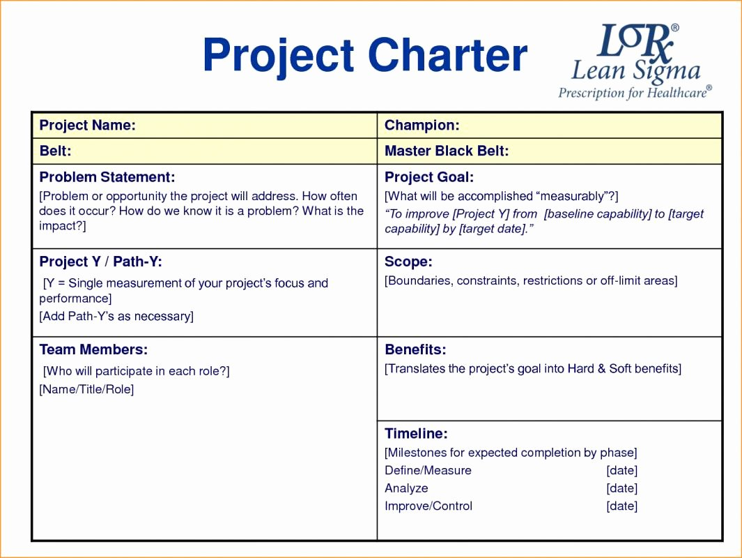 Project Charter Template Excel Inspirational Project Charter Example