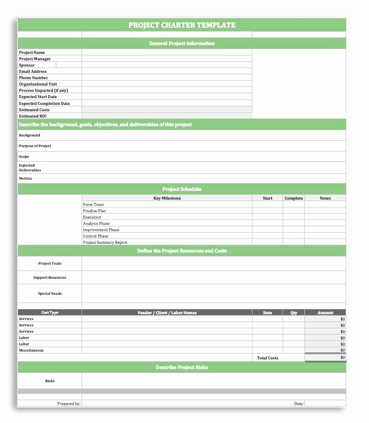 Project Charter Template Excel Lovely Project Charter Template