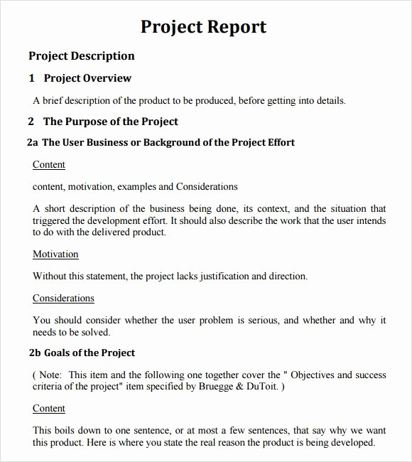 Project Closeout Report Template Lovely 26 Project Report Templates Download Docs Word Pages