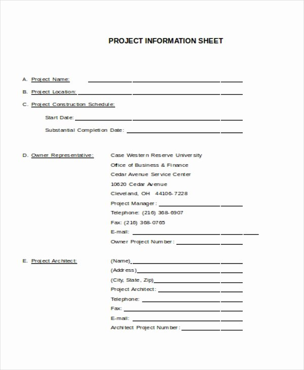 Project Data Sheet Template Unique 27 Sheet Templates In Word