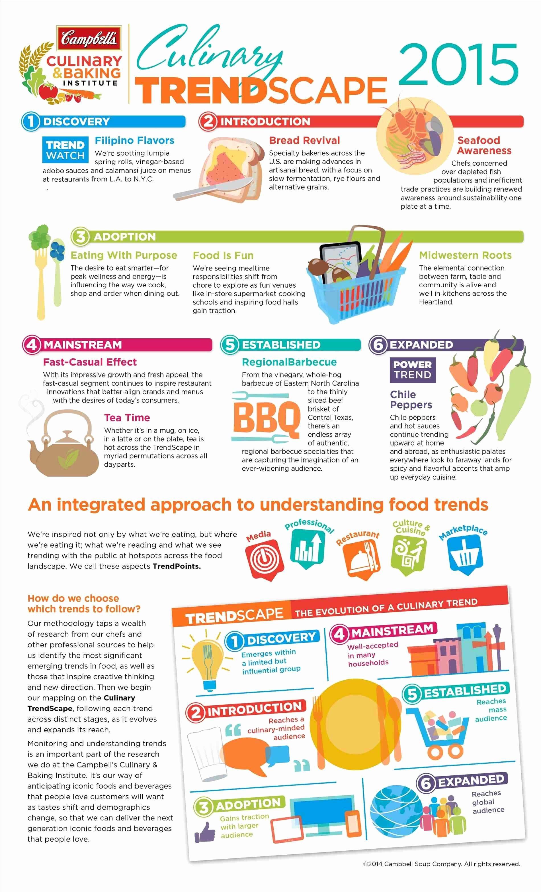 Project Information Sheet Template Inspirational Fact Sheet Template