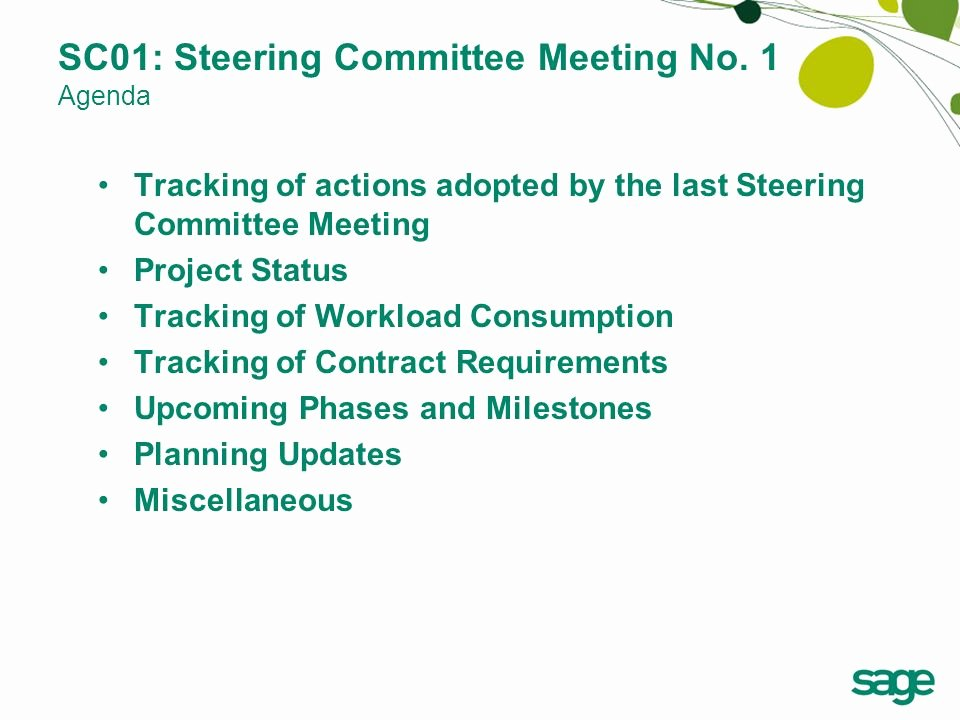 Project Status Meeting Agenda Awesome Steering Mittee No 1 Ppt Video Online