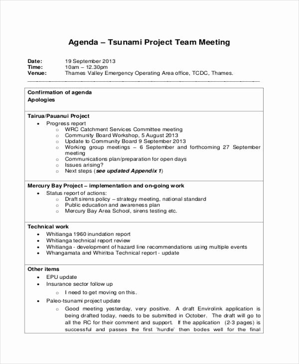 Project Status Meeting Template Luxury 33 Agenda Template Designs