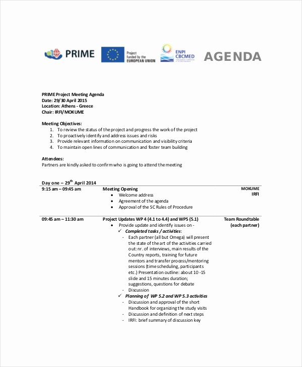 Project Status Meeting Template New 9 Project Meeting Agenda Template Word Pdf
