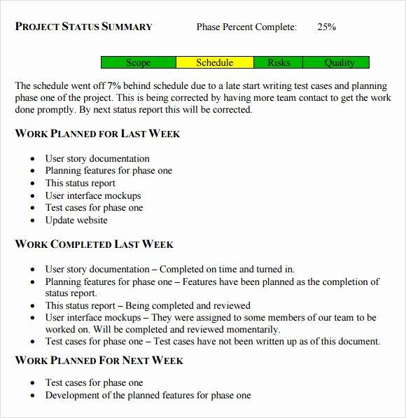 Project Status Update Email Sample Fresh Sample Status Report 10 Example format