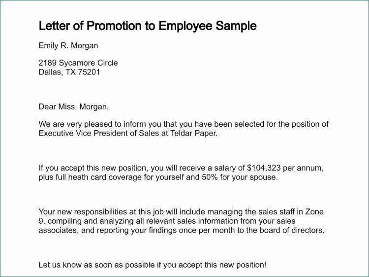 Promotion Announcement Templates Elegant Professional Letters