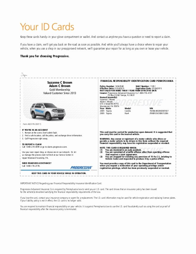 Proof Of Auto Insurance Template Free Inspirational Pgr Insurance Idcard