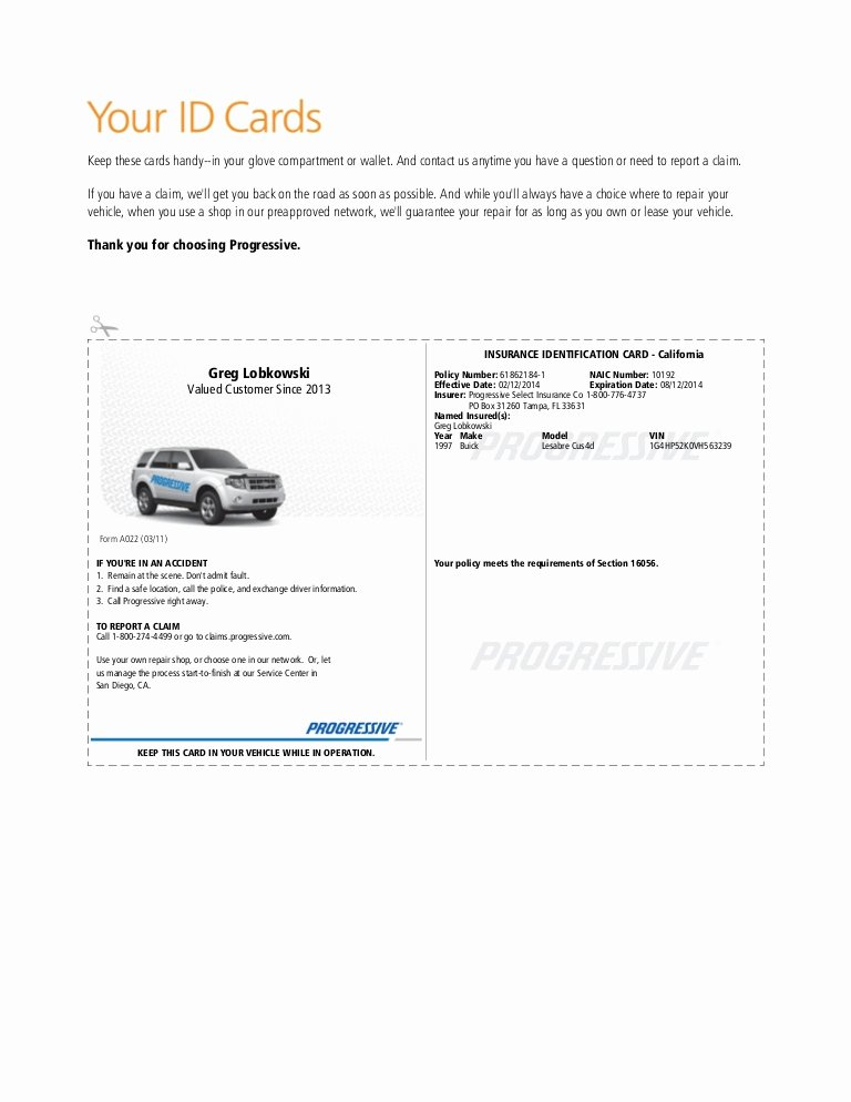 Proof Of Car Insurance Template Awesome Pgr Insurance Idcard 1