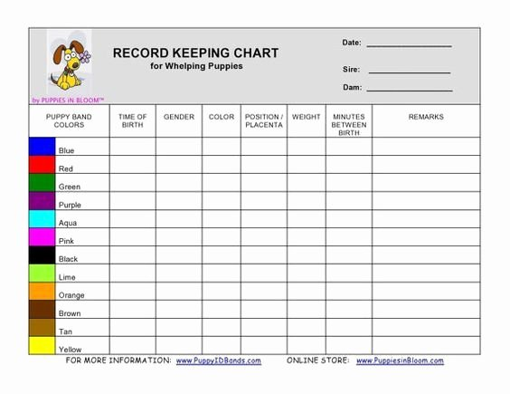 Puppy Record Template Lovely Record Keeping Charts for Breeders Whelping Details