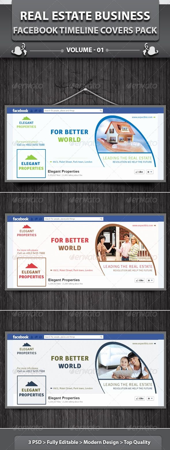 Real Estate Timeline Template Awesome Real Estate Business Fb Timeline Volume 2