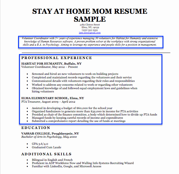 Reentering the Workforce Resume Examples New Stay at Home Mom Resume Sample & Writing Tips