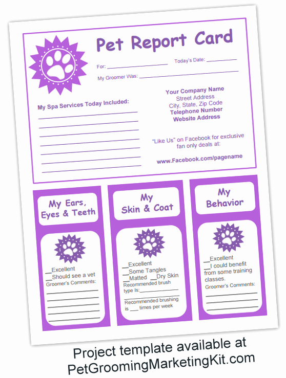 Report Card Templates Free New Dog Grooming Business Templates