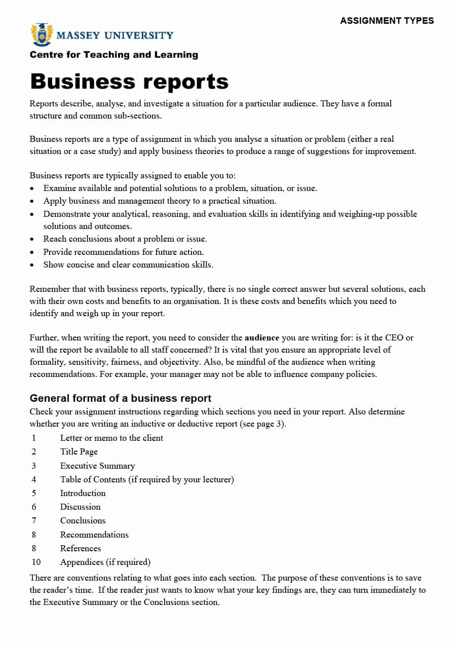 Report Writing Template Beautiful 30 Business Report Templates & format Examples Template Lab
