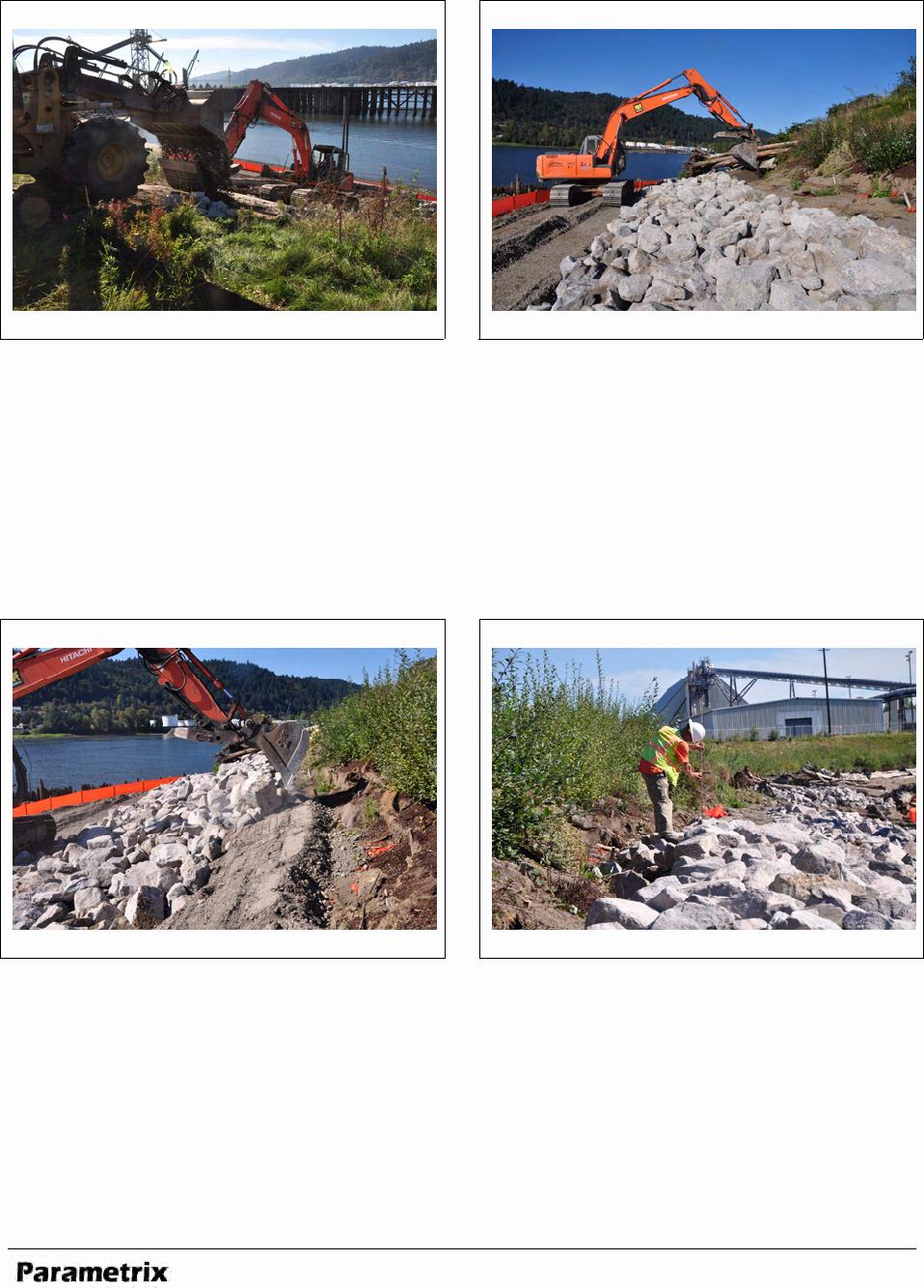 Restaurant Observation Report Sample Lovely Download Download Blank Daily Observation Report Template