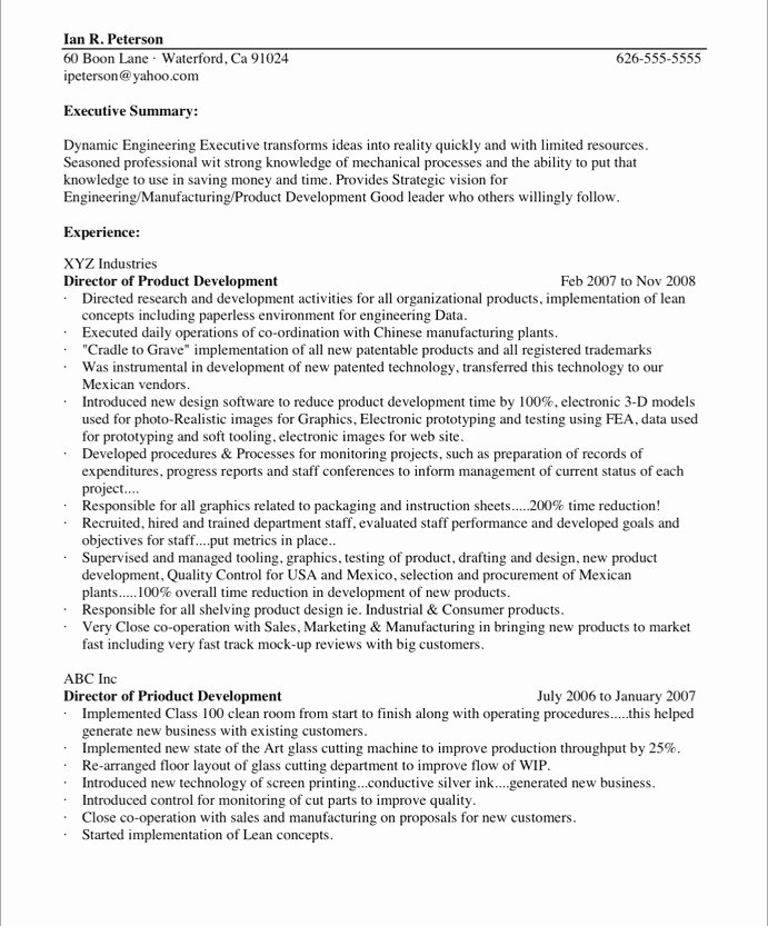 Resume In Paragraph form Luxury Chief Technology Ficer Free Resume Samples
