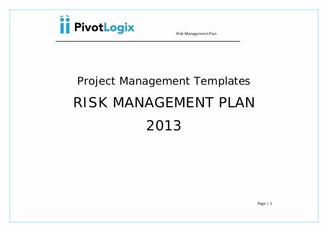 Risk Management Plan Template Doc Best Of Pmp Risk Management Plan & Template