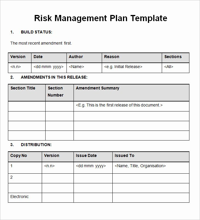 Risk Management Plan Template Doc Elegant Importance Of Having A Risk Management Plan