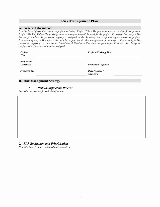 Risk Management Plan Template Doc Elegant Risk Management Plan Template 1 2