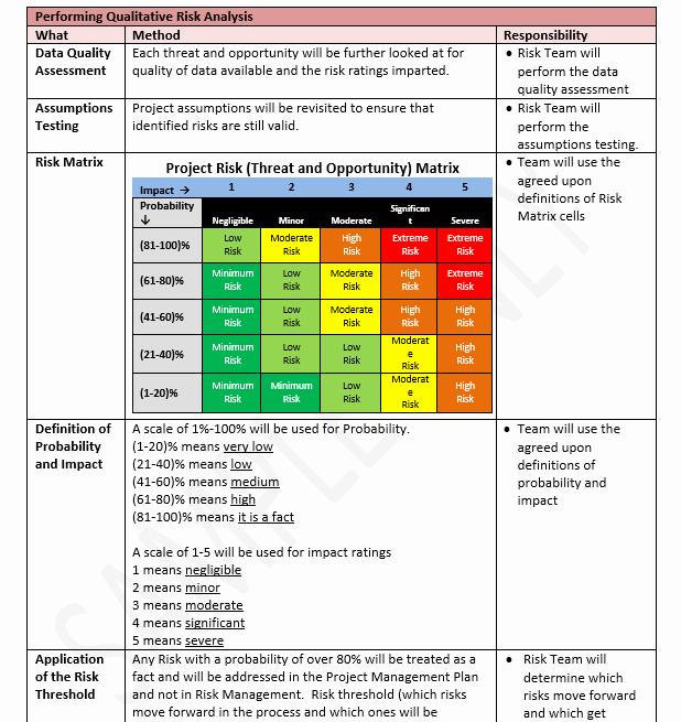 Risk Management Plan Template Doc Fresh Risk Management Plan Template