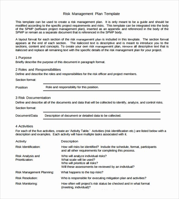 Risk Management Plan Template Doc Fresh Sample Strategic Plan Template 25 Free Documents In Pdf