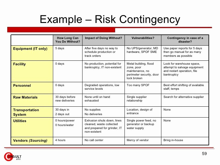 Risk Management Strategy Template Lovely Risk Management Plan Example – Emmamcintyrephotography