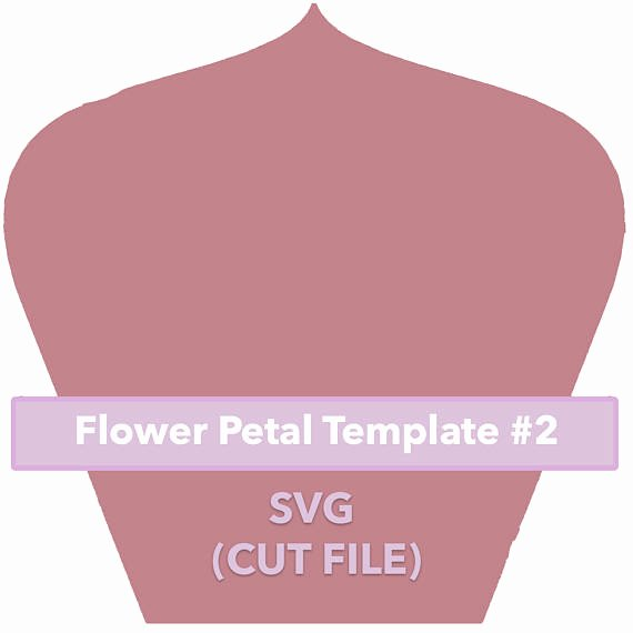 Rose Petal Svg Awesome Paper Flower Template 2 Svg File