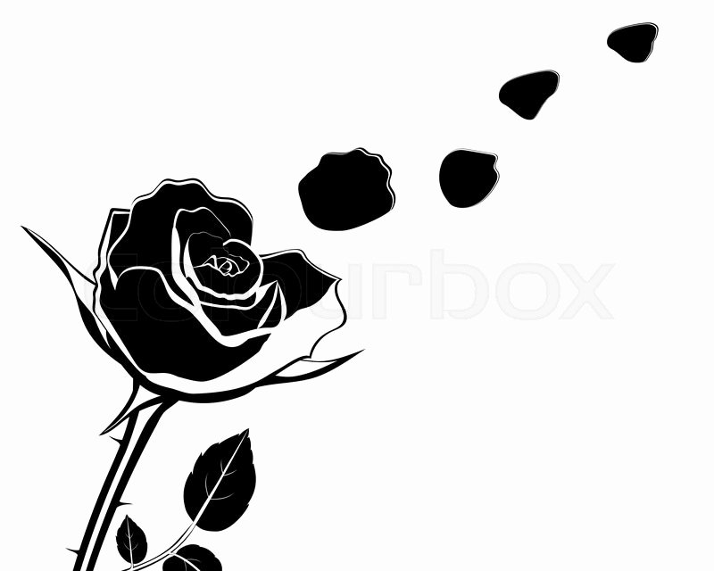 Rose Petal Svg Awesome Silhouette Of the Flower with Rose