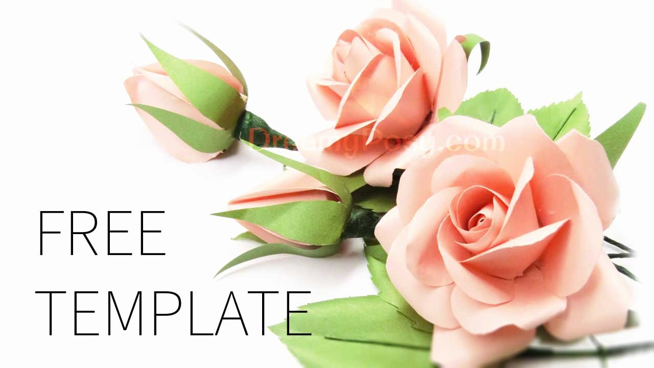 Rose Template Printable Luxury Easy to Make Best Paper Rose with Free Template and Tutorial