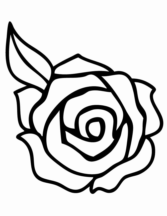 Rose Template Printable New Rose Template Printable Clipart Best