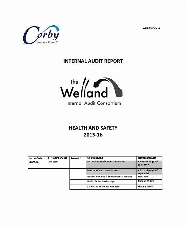 Safety Audit Report Sample Luxury 10 Safety Audit Report Templates Pdf
