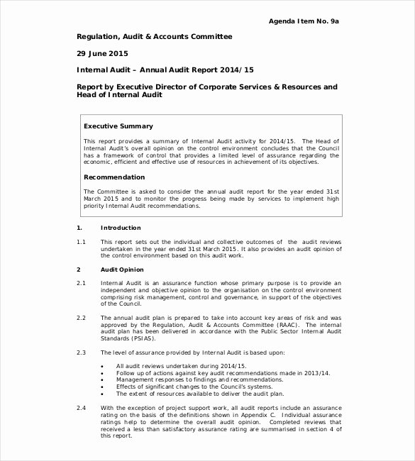 Safety Audit Report Sample Luxury 31 Audit Report Templates Free Sample Pdf Word format
