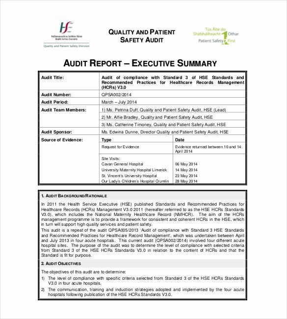 Safety Audit Report Sample Luxury Summary Report Templates 10 Free Pdf Apple Pages
