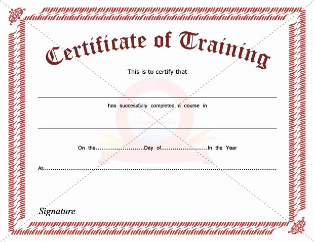 Safety Training Certificate Template Elegant Training Certification Template Bire1andwap
