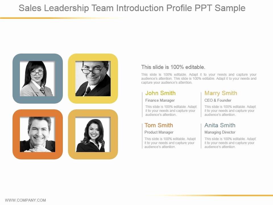 Sales Customer Profile Template Beautiful Sales Leadership Team Introduction Profile Ppt Sample