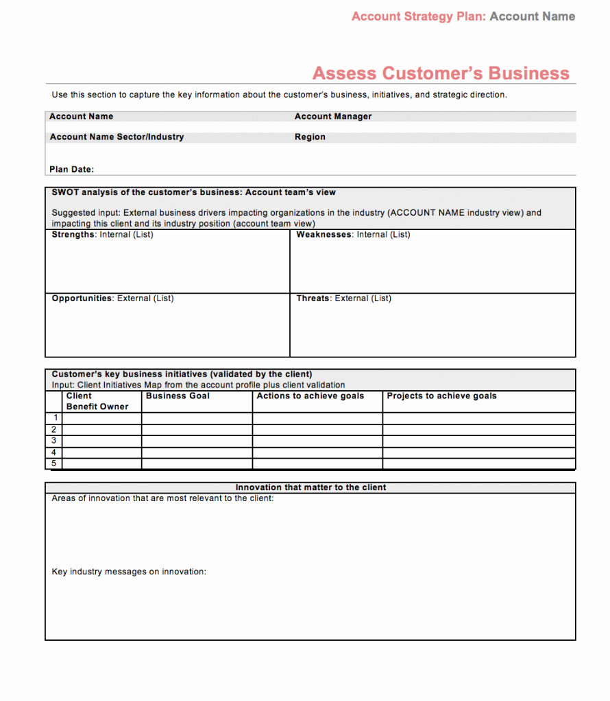 Sales Customer Profile Template Lovely Strategic Account Plan Template assess Customers