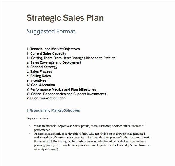 Sample Bonus Plan Document Luxury 7 Sales Plan Template Pdf Doc
