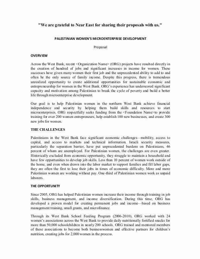 Sample Grant Report Fresh Sample Proposal On Women S Microenterprise Development