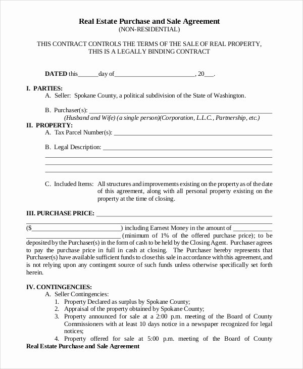 Sample Home Buyout Agreement Luxury 12 Sample Purchase and Sale Agreements Word Pdf