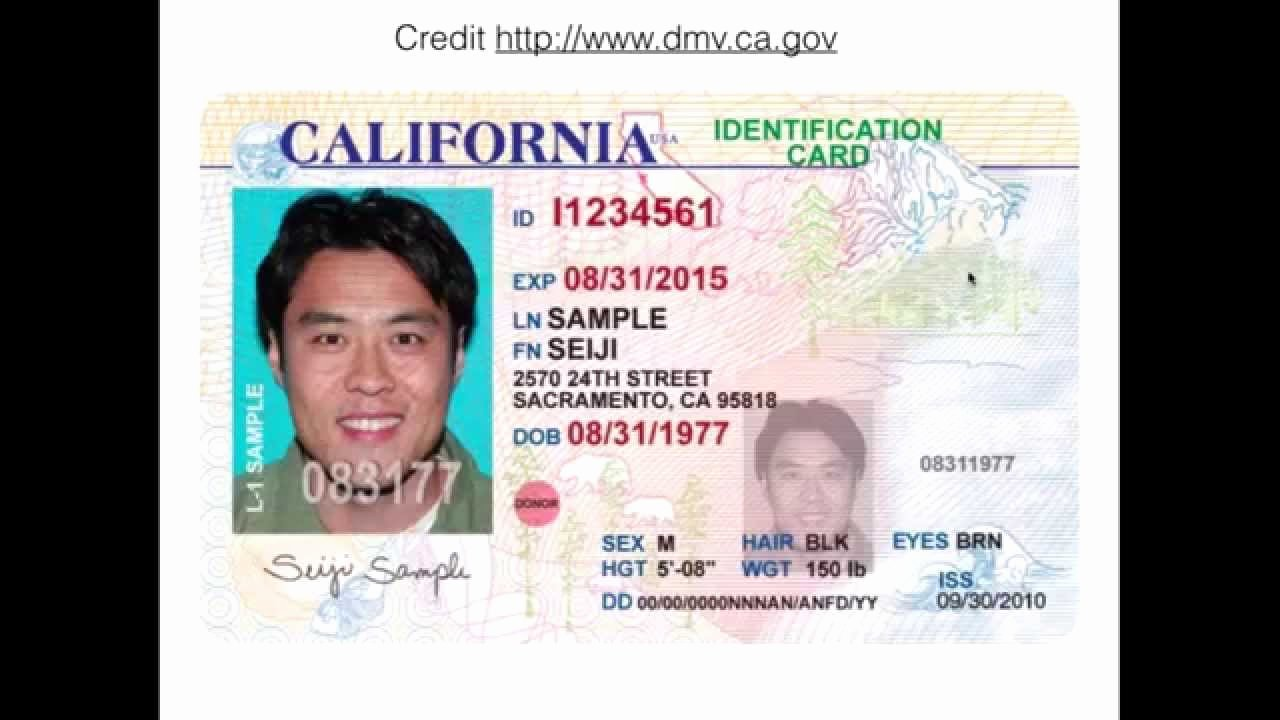 Sample Identity Card Inspirational Ca Id Card Front