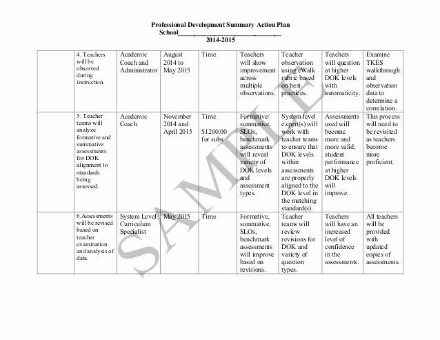 Sample Professional Development Plan Beautiful Sample Action Plan
